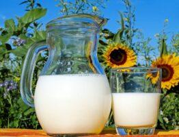 Quels sont les aliments riches en calcium?