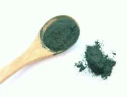 Dossier complet sur la spiruline (algue)